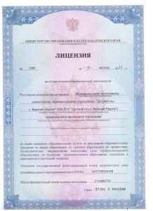 лицензия1 001
